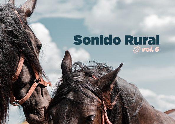 Sonido Rural Vol. 6
